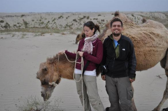 Learning how to manage an unruly camel in China