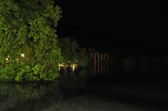 Coral Bay's mangroves at night