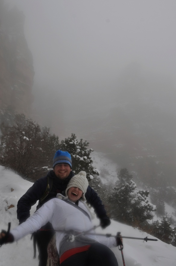 Horsing around on a misty day in the Grand Canyon, USA